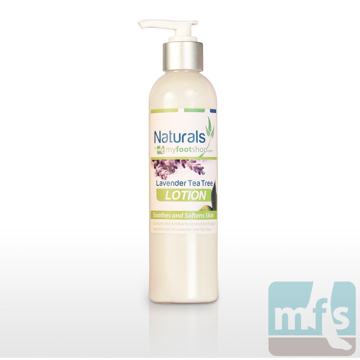 Picture of Natural Lavender Tea Tree Lotion - 8 oz.